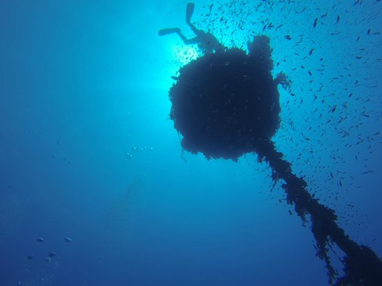 La Sirene Resort: Blueforce diving nuweiba