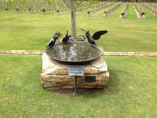Laurance of Margaret River: In memory of Steve Irwin.