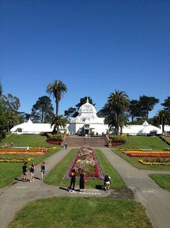 พื้นที่สันทนาการแห่งชาติโกลเดนเกท: Golden Gate Park with clear blue skies!