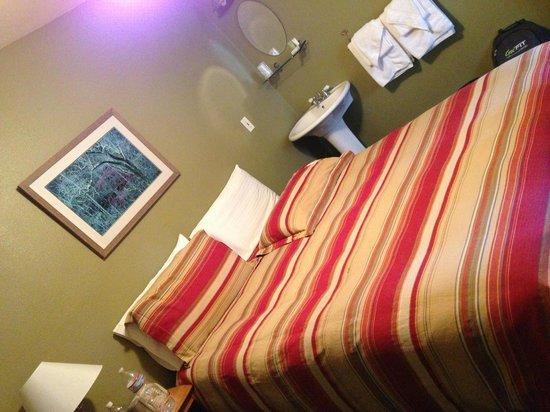 El Mono Motel: la nostra camera
