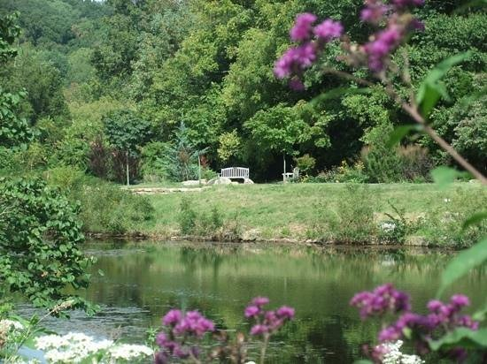 Bernheim Arboretum & Forest: a peaceful place to rest