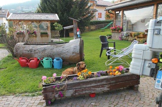 Berg Hotel Latemar Spitze : giardino