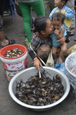 Cambodia Photo Tours by Michael Klinkhamer: Crabs
