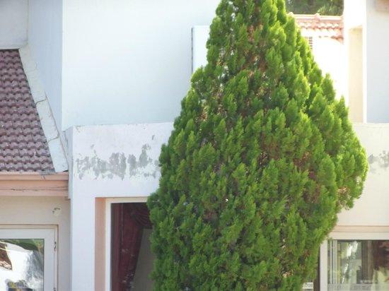 Mountain View Hotel & Villas: Peeling Paintwork on hotel