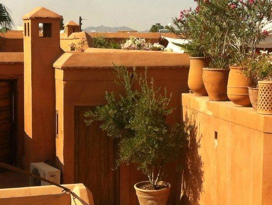 Terrace view  Riyad el Cadi