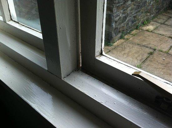 Rosecraddoc Manor: Bedroom Window