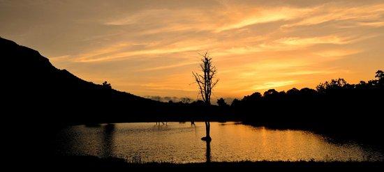 Sunset from machaan
