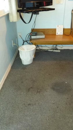Cypress Tree Motel: floor by the TV