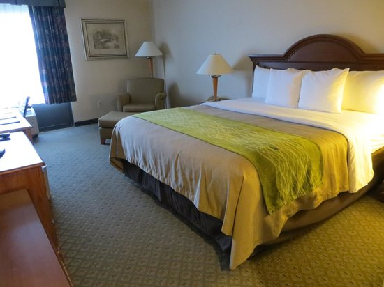 The Comfort Inn & Suites Anaheim, Disneyland Resort : Room