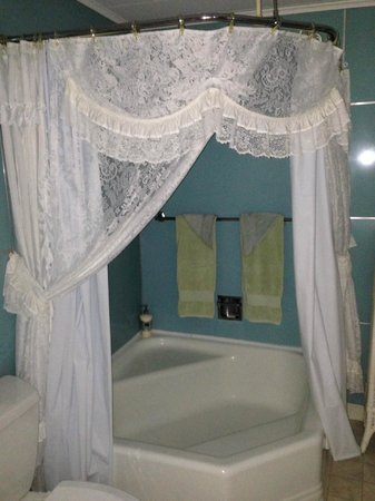 Isaac Hilliard House Bed and Breakfast: Bridal bathroom