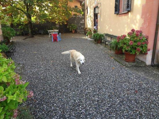 Agriturismo Villanova : Boas vindas do Giro