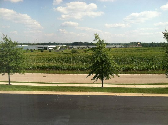 Residence Inn Holland: view from room