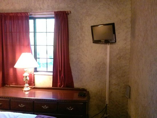 Hampshire Inn Conference Center: tv in bedroom