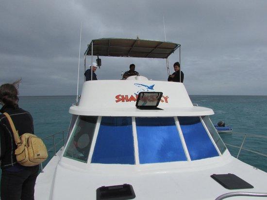 Sharksky Ecoadventures Galapagos: The boat