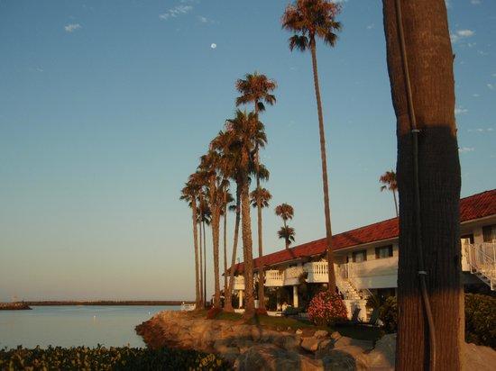 Oceanside Marina Suites : Front of Property