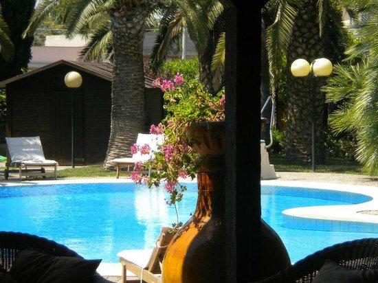 B&B All'Ombra del Palmeto: zona giardino/piscina