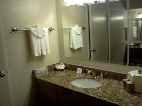 Governors Inn Hotel: Baño