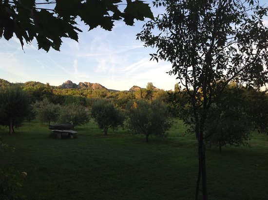 Mas de la Croix d'Arles : View from the patio with morning coffee