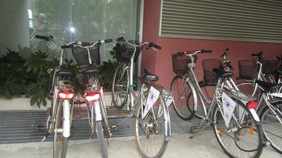 Hotel Rosanna: free bikes