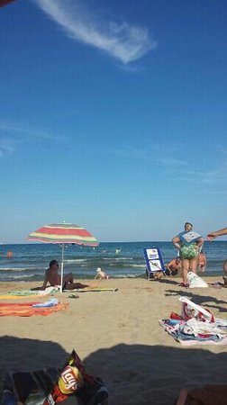 Playa de la Pineda: la pineda
