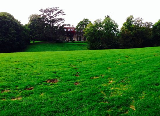 Holbrook House Hotel: View from gardens to rear