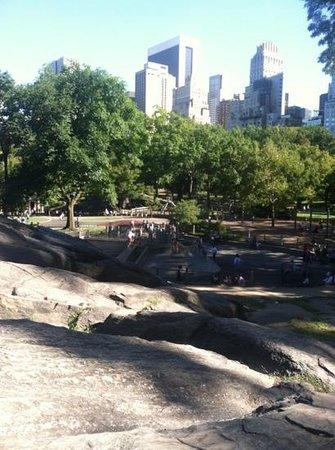 เซ็นทรัลปาร์ค: one of many playgrounds in Central Park