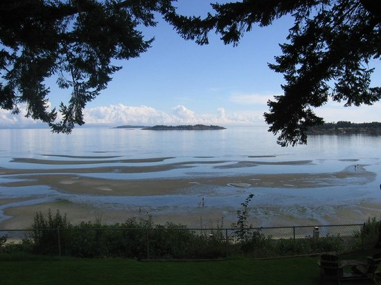 Madrona Beach Resort: View from Patio @ Madron Beach Resort