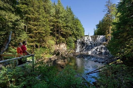 Waterfall Resort Alaska: 52 Acres of Alaska Wilderness and Our Own Waterfall