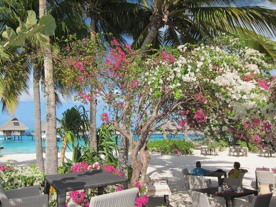 Conrad Bora Bora Nui: petit déjeuner