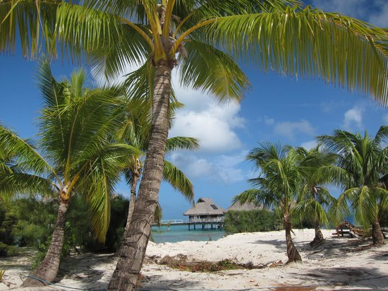 Conrad Bora Bora Nui: Resort