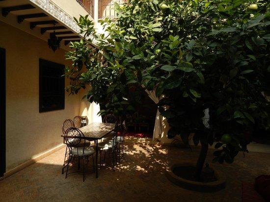 salle de bain violette picture of riad l 39 oiseau du paradis marrakech tripadvisor. Black Bedroom Furniture Sets. Home Design Ideas
