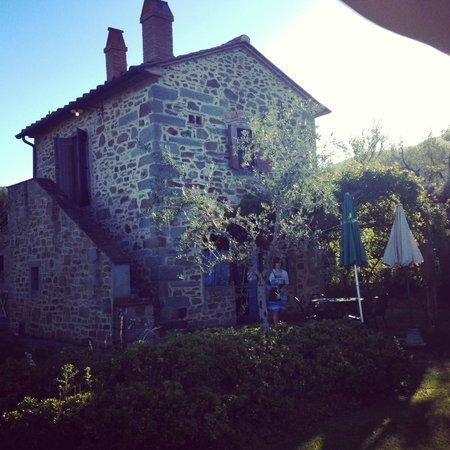 Casali in Val di Chio by Famiglia Buccelletti: Villa S. Stefano