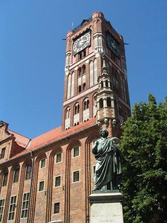 Willa Biala Lilia: Nicolaus Copernicus Thorunensis