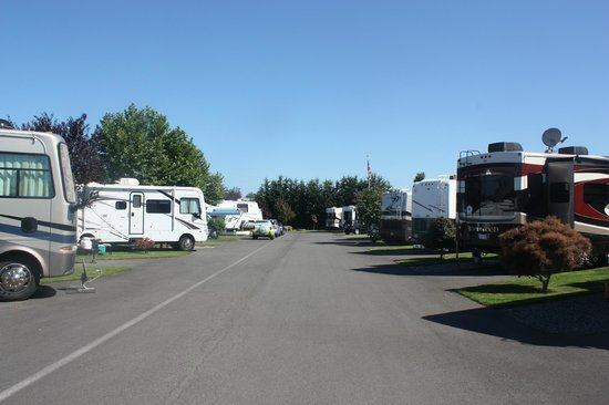 Gilgal Oasis Rv Park Updated 2017 Campground Reviews