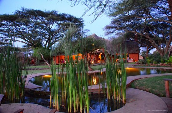 Tawi Lodge: A view from the natural pool