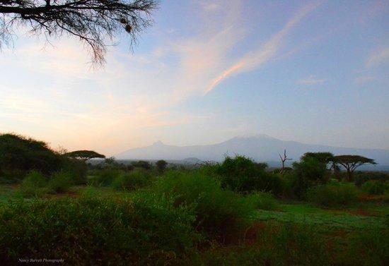 Tawi Lodge: Mt. Kilimanjaro outside your cottage door