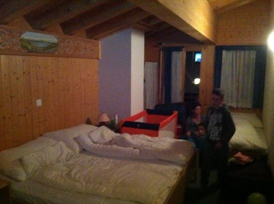 Hotel Wildbach: the room