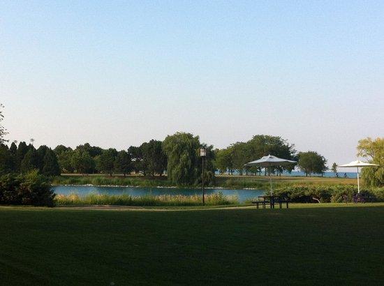 Northwestern University: Giardino davanti al Norris Centre