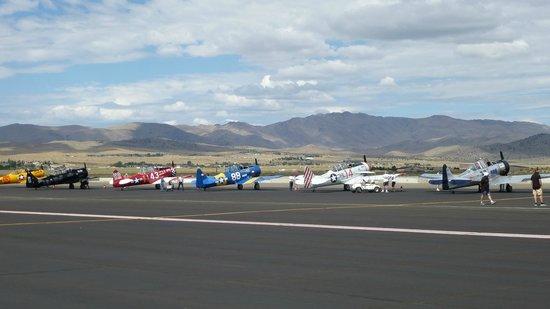 Reno Air Racing Association: T-6's