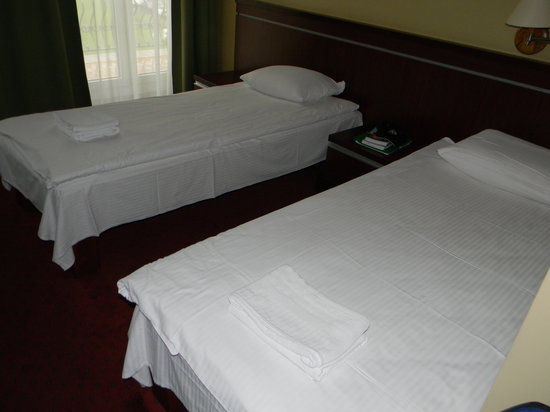 Congress Hotel: Our room