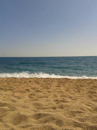 Reymar Hotel : beach malgrat