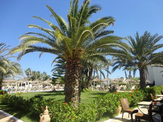 Djerba Golf Resort & Spa : Hôtel