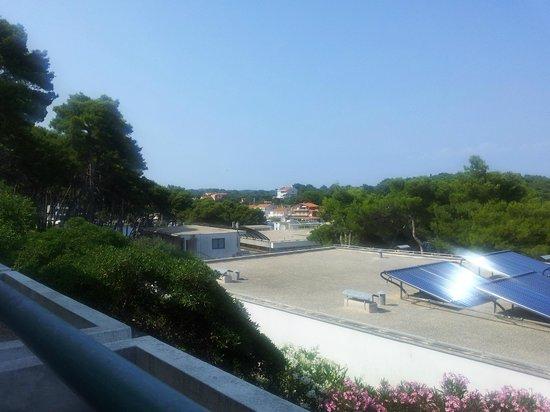 Lavanda: view