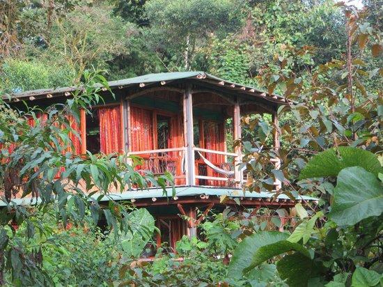 San Jorge Eco-Lodge & Botanical Reserve: Milpe