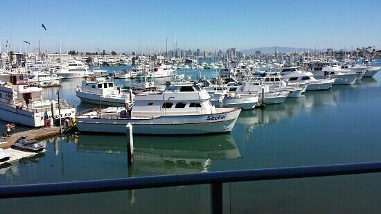 Point Loma Seafoods : view from the deck