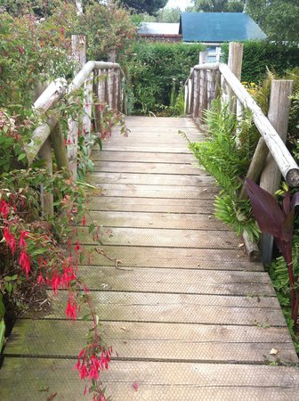Reg's Garden: A bridge over untroubled water...