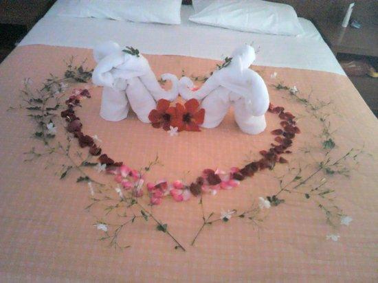 Vardis Olive Garden: nice towel art