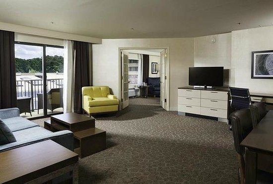 DoubleTree by Hilton Williamsburg: Suite