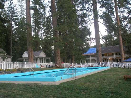 Big Trees Lodge : Piscina