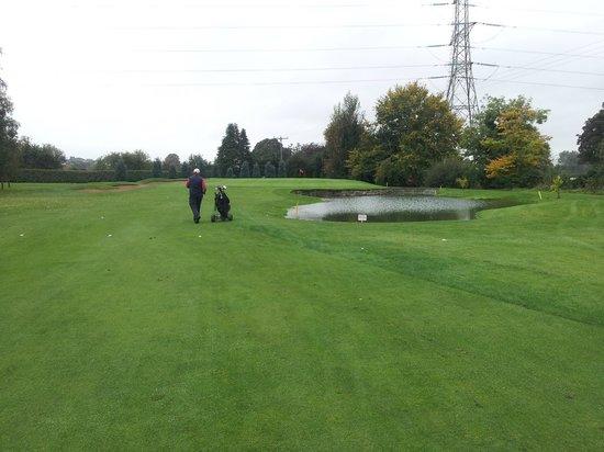 Lisburn Golf Club: Approach to 11th green